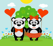 Valentine's day  background with pandas Stock Image