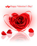 Valentine`s day background. Red rose with ribbons Stock Images