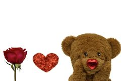 Valentine`s day background with teddy bear and rose. stock photo