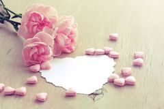 Valentine`s Day background, three pink carnations, paper blank Stock Photo