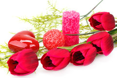 Valentine's day. Candles and tulips isolated on white background Royalty Free Stock Photography