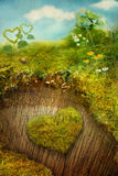 Valentine's day card. Valentine's day holiday card with nature. Heart made of moss on a tree bark with miniature landscape and spring symbols Royalty Free Stock Photo