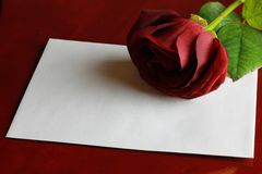 Valentine`s Day card. Red rose with a letter. stock image