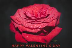 Valentine`s day card. Holiday lovers. The 14th of February royalty free stock photo