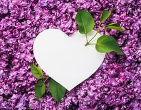 Valentine`s Day card with a white note in heart form royalty free stock image