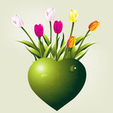Valentine's Day Concept. Green heart shape and colorful tulips royalty free illustration
