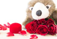 Valentine's Day. Concept Valentine 'Day Roses and Gift on White Background Stock Image