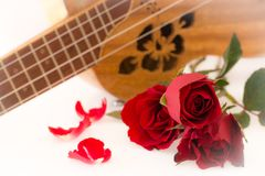 Valentine's Day. Concept Valentine 'Day Roses and Music on White Background Stock Image