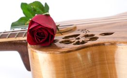 Valentine's Day. Concept Valentine 'Day Roses and Music on White Background Royalty Free Stock Photography
