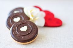 Valentine's day cookies. Chocolate valentine's day cookies composition Royalty Free Stock Images