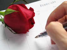 Valentine's Day Date Stock Photography