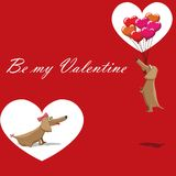 Valentines Day, dog with balloons flying, postcard text be my valentine.  Stock Photos