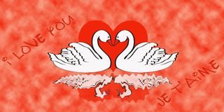 Valentine's day greeting card. With two swans Royalty Free Stock Photo