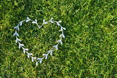 Valentine`s day. Heart and grass royalty free stock photos