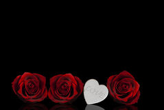 Valentine's day. Heart and red roses Stock Images