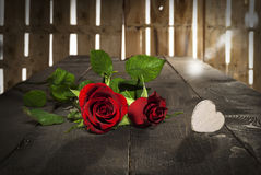 Valentine's day heart and roses. Roses for Valentine's day, wood background Royalty Free Stock Images