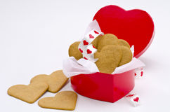 Valentine's Day Royalty Free Stock Photos