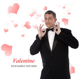 Valentine's Day.Holiday Royalty Free Stock Photos