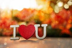 Valentine`s Day. inscription i love you bokeh background stock image