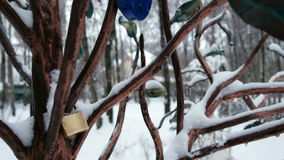 Valentine`s Day. The  Locks on the Tree on Valentine`s Day stock video