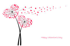 Valentine's Day Love Dandelion with red hearts greeting card vector Royalty Free Stock Photography