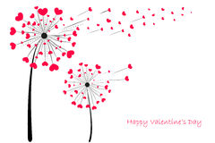 Valentine's Day Love Dandelion with red hearts greeting card vector Stock Photo