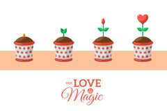 Valentine's Day Love Flower. Vector illustration. Flower in Pot with Red Heart Bud in Flat Style. Valentine Romantic Concept for Holiday Design. Love is Magic Stock Images