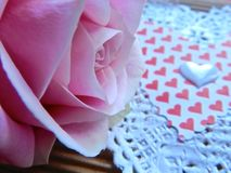 Valentine`s Day. Pink single rose on a handmade Valentine Card Stock Photos