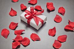 Valentine`s day present with red rose petals. Stock Photos