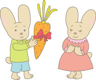 Valentine's day. Rabbits with carrot Royalty Free Stock Images