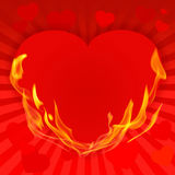 Valentine's Day red background-10 Royalty Free Stock Photos