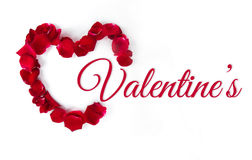 Valentine`s Day. Red roses with petals on white background. Image of Valentines day Stock Images