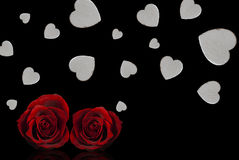 Valentine's day. Red roses and white hearts Royalty Free Stock Photo