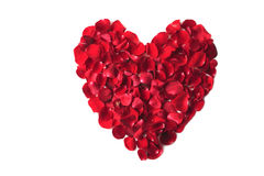 Valentine's day rose heart Royalty Free Stock Photos