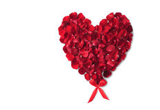 Valentine's day rose heart Royalty Free Stock Image