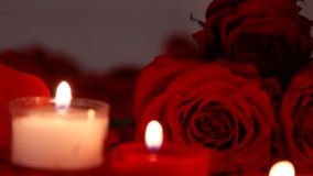 Valentine`s day roses close-up with candles. Valentine`s day rose bouquet and petals in background with candles stock video