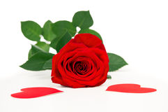 Valentine's Day roses and heart Stock Images