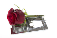 Valentine's day trap. Valentine day's trap isolated on white Royalty Free Stock Photography