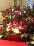 Valentine's Day. Two dozen long stem red Stock Photo