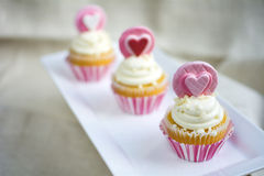 Valentine's french vanilla cupcake with heart fondant topper. Valentine's french vanilla cupcakes with heart gum paste topper in white square ceramic plate focus royalty free stock photo