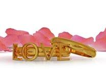 Valentine's rings Stock Image