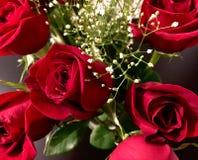 Valentine& x27; s-Tagesrosen Lizenzfreie Stockfotos