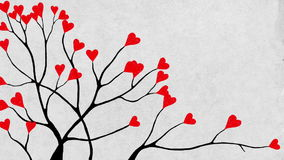 Valentine's tree close-up. A tree with heart shaped leaves stock footage