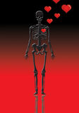 valentine Skeleton  Royalty Free Stock Image