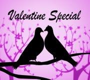 Valentine Special Indicates Valentines Day en Koopjes stock illustratie