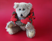 Valentine teddy bear with wreath Royalty Free Stock Image
