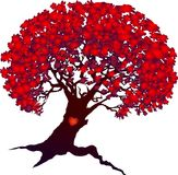 Valentine tree with heart isolated on white Royalty Free Stock Photography