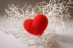 Valentine white branch with heart. Valentine white branch with red fluffy heart Stock Photos