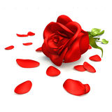 valentines сделанные 3d розовые Стоковые Фото