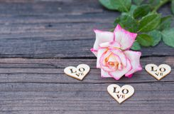 Valentines Background, wooden heart, rose, Valentine day love Stock Images